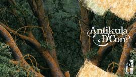 Antikula dcore